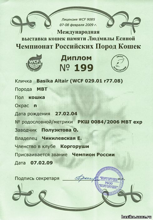 Диплом Чемпион России 2009
